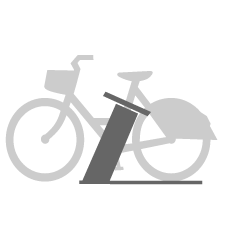 Easybike what it is